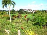 Красивая Лот в Ломас Mironas сообщества