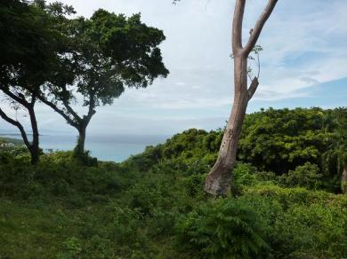 Terrain à bâtir avec vue sur l'océan